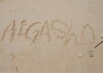 愛雅粧沖縄校2019_レクレーションでビーチへ_Fl